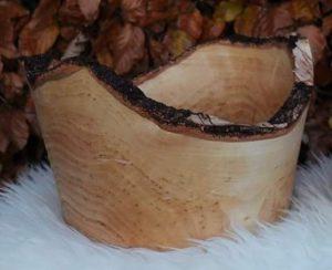 Barkskål i birk